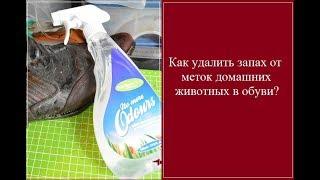 Актуальная тема. Как удалить запах от меток домашних животных в обуви?