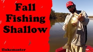 How to Fish for Bass in the Fall