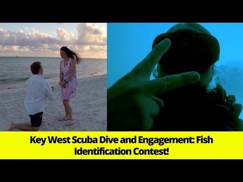 Key West Scuba Dive and Engagement: Fish Identification Contest!