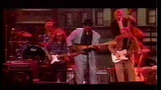 Скачать Big Bill Morganfield I M Your Hoochie Coochie Man Live Washinton