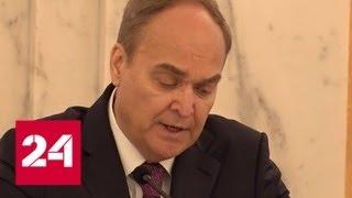 """Посол России в США: """"Белые каски"""" готовят новые провокации в Сирии - Россия 24"""
