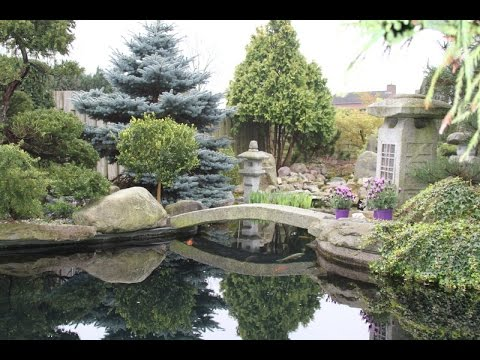 superbe jardin japonais multi bassin a koi youtube. Black Bedroom Furniture Sets. Home Design Ideas