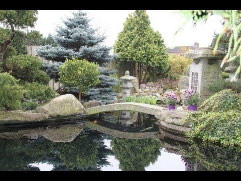 Bassin De Jardin D Occasion