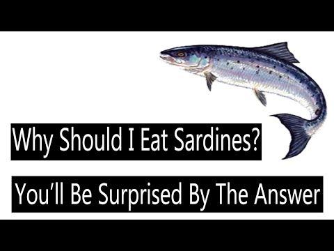 Benefits Of Sardines || Sardines Nutrition