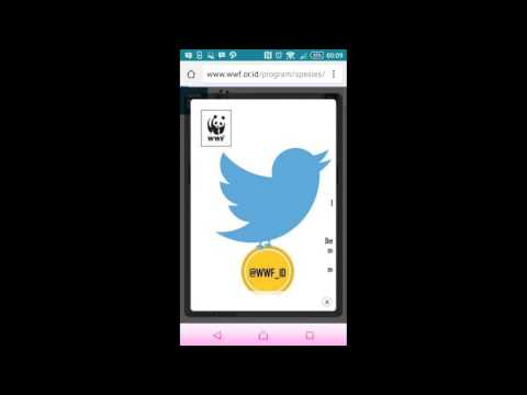 Analisa Website WWF (World Wide Fund for Nature) Indonesia