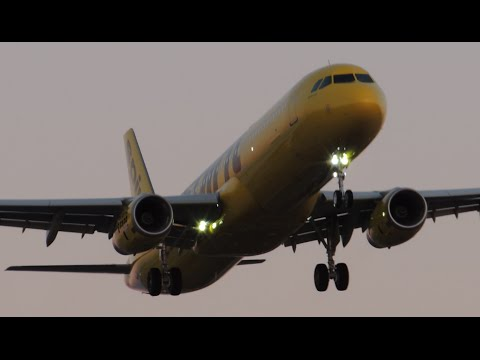 Spirit Airlines Airbus A321-231 [N660NK] landing in LAX
