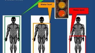 ACE PG Concept Bridge (CB) Management of Diarrhea Part 01A