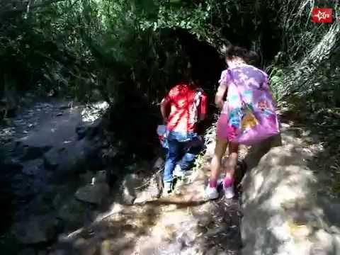 Walking Tour on Wadi Katleb (Nahal Sorek)