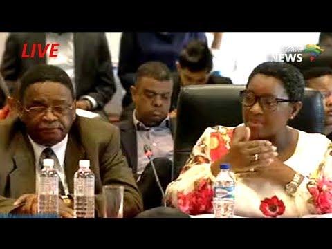 Bathabile Dlamini social-grant crisis inquiry: 24 Jan 2018