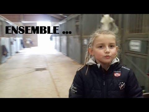 [Équitation] Ensemble...