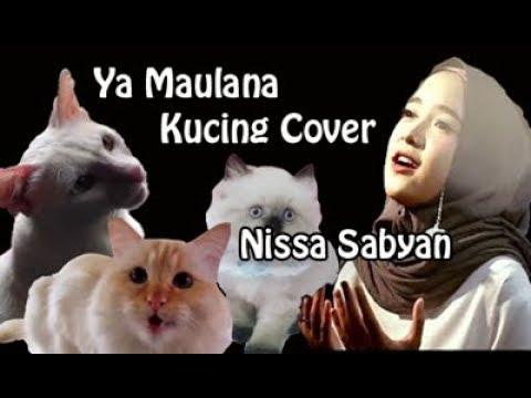 Nissa Sabyan - Ya Maulana (VERSI KUCING)