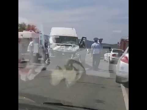 Два человека погибли в ДТП с маршруткой в Партизанском районе