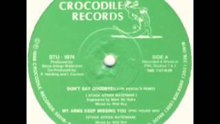 Rick Astley Don 39 t Say Goodbye Latin Rascals Remix.mp3
