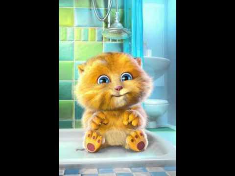 gatinho fofinho cantando gammy bear