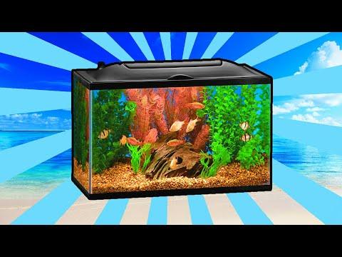 minecraft-pe-|-how-to-make-an-aquarium!-[tutorial-1.2]