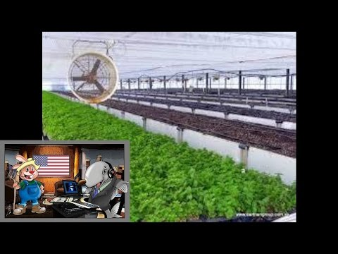Episode 49 - Aquaponics from down under