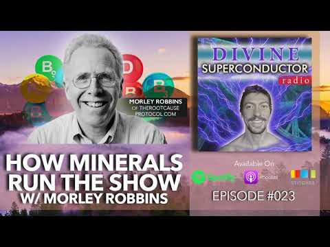How Minerals Run The Show W/ Morley Robbins | Divine Superconductor Radio Ep. #023