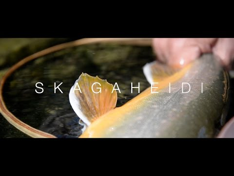 CHAR FISHING, SKAGAHEIDI ICELAND // Pipe Media