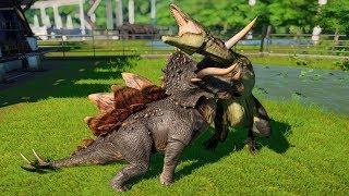 Jurassic World Evolution - 2 Stegoceratops vs 2 Carcharodontosaurus | Dinosaurs Battle #21