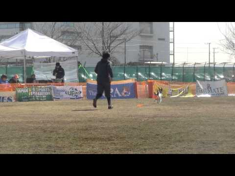 AWI & UFO-Japan  Local  Kaina D3 優勝