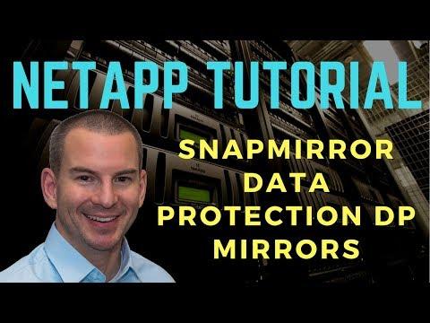 NetApp SnapMirror Data Protection DP Mirrors Tutorial