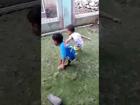Video Lucu Anak Kecil Bertarung