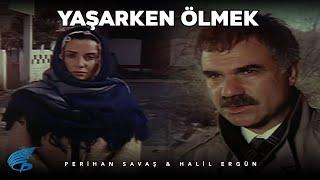 Yaşarken Ölmek - Türk Filmi