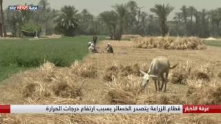 حرارة الشرق الأوسط.. ارتفاع ينذر بالأخطار
