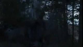 Туман 2010 русский фильм   трейлер