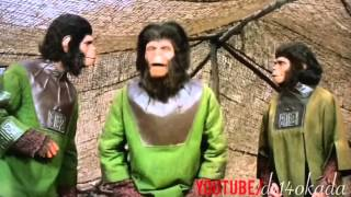 Planet Of The Apes (HI edition): Drunk Apes