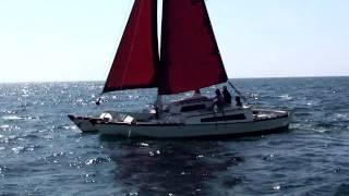 WDsailing Wharram - TIKI 30 sailing