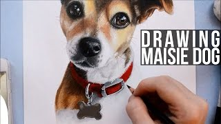 Speed Drawing Jack Russel Terrier Dog Portrait
