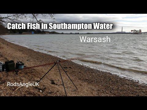 Catch Fish In Southampton Water: WARSASH