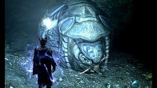 Жук-панцирник и шлем из его хитина, Skyrim(С дополнением