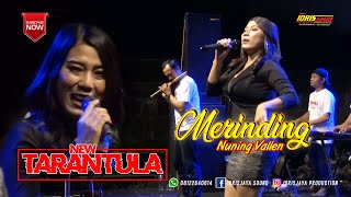 Download lagu MERINDING NUNING VALEN NEW TARANTULA IDRISJAYA PRODUCTION MP3