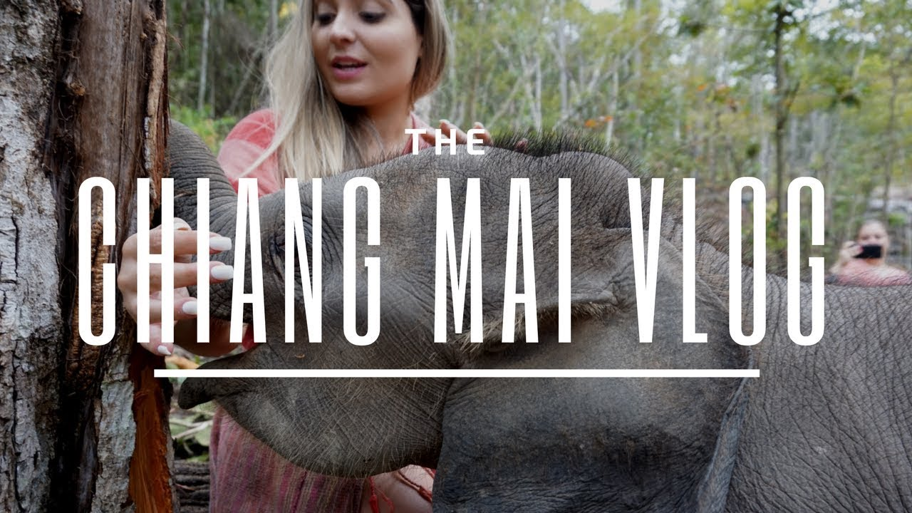 The Chiang Mai Vlog