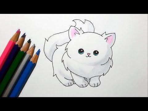 how-to-draw-a-cute-cartoon-cat---drawing-a-fluffy-kitten
