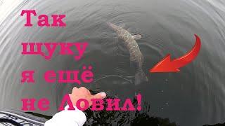 Так ЩУКУ я ещё НЕ ЛОВИЛ! Рыбалка на спиннинг на щуку. Рыбалка летом. Ловля щуки.