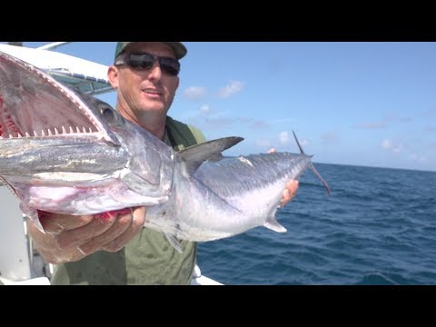 kingfish {Catch Clean Cook} Caramel Glazed Smoked Fish Dip