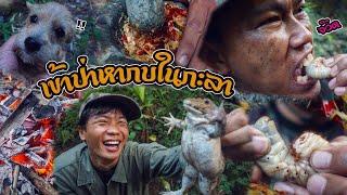 แกงอ่อมกบ ล่าสัตว์ในป่า หาของกินโคตรแซ่บ!!!!