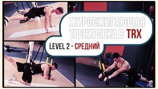 Александр Мельниченко - Жиросжигающая тренировка в TRX | Средний уровень