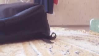 видео Купить рюкзак Dakine Campus 25L Palm. Мы ВСЕГДА идем навстречу