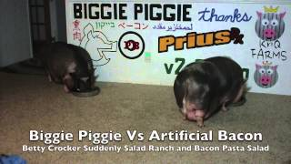 Biggie Piggie Vs Betty Crocker Suddenly Salad Ranch And Bacon V2.0.com