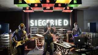 Siegfried - Brave New World, March 8th 2014