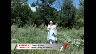 КоростеньТВ_05-08-16_Про вредные растения