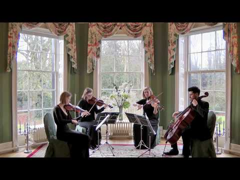 Someone Like You (Adele) Wedding String Quartet