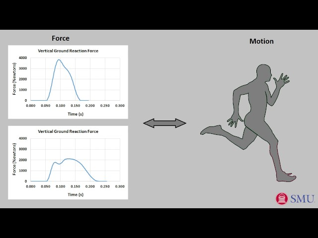a9077485b29e53 Does symmetry matter for speed  Study finds Usain Bolt may have  asymmetrical running gait
