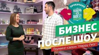 Качественный груминг в Казани! Как изменился салон Happy Pets после участия в шоу?