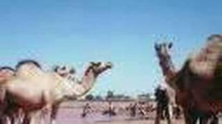 Aduunyo Somali song Maxamed Mooge