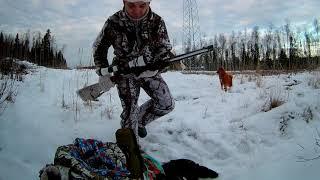 Охота на тетерева зимой 2017 года